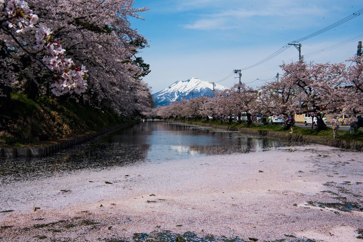 Hirosaki hanaikada 201804